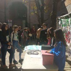 Escola Verda #SomLaSalle
